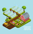 hydroponics isometric composition vector image vector image