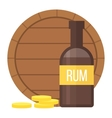 Pirate rum bottle vector image vector image