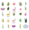 set lama cacti drinks and decorative collection vector image