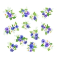 Wildflowers Bouquets Set vector image