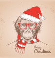 animal monkey dressed in new year hat and scarf vector image vector image