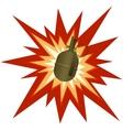 Assault grenade vector image vector image