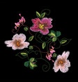 colorful embroidery on a black background vector image