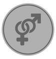 Heterosexual symbol silver coin vector image