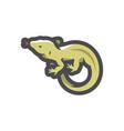 lizard desert animal icon cartoon vector image