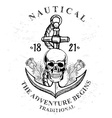 Pirate skull with anchor design vector image