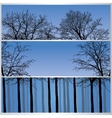 Set of forest banners vector image