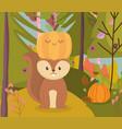 cute squirrel with pumpkin in head hello autumn vector image vector image