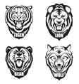 heads wild animals vector image