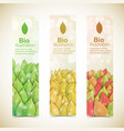 nature abstract eco banners set vector image