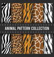 seamless pattern background african animal print vector image