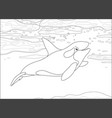 killer whale swimming in a polar sea vector image vector image