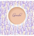 Lavender circle vector image