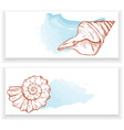 sea shells vector image