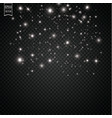 sparks and stars glitter special light effect vector image vector image
