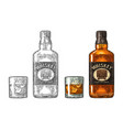 whiskey glass with ice cubes and bottle label vector image