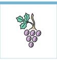 Wine grape icon vector image