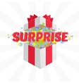 Box with a surprise vector image vector image