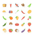 fruits vegetables and foods flat icons vector image