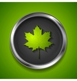Green summer maple leaf on metal button vector image vector image