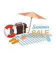 suitcase umbrella and beach accessories vector image