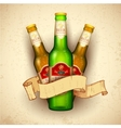 Beer Bottle with Ribbon vector image vector image