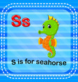 flashcard letter s is for seahorse vector image vector image