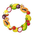 Frame with exotic tropical fruits of
