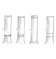 girdling tree vintage vector image vector image