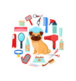 grooming tools and dog vector image vector image