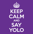 keep calm and say YOLO poster quote vector image vector image