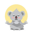 koala bear sits in yoga pose and meditates vector image
