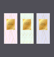 luxury banners premium package templates vector image