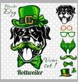 rottweiler dog and design elements st patricks vector image vector image