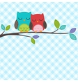 couple of owls vector image