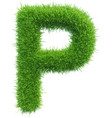 capital letter p from grass on white vector image vector image