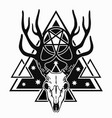 dark skull deer1 vector image