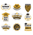 set black and gold colored senior text vector image vector image
