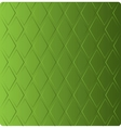 stylish grass green background in diamond-shaped vector image vector image