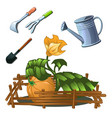 a set garden tools to take care a growing vector image