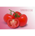 four ripe red tomatoes on a branch vector image vector image