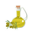 isolated glass bottle with olive oil and a sprig vector image vector image