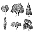 Set of trees in silhouettes vector image