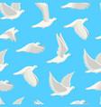 cartoon white dove bird seamless pattern vector image vector image