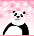 cute giant panda bear with pink cherry blossoms vector image
