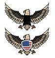 eagle with american flag design element vector image