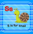flashcard letter s is for snail vector image vector image