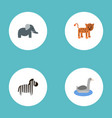 flat icons waterbird trunked animal panther and vector image vector image