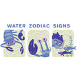 funny zodiac signs colorful vector image vector image