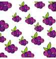 grapes pattern fresh fruit drawing icon vector image vector image